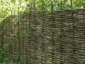 Ornamental/Natural Fencing